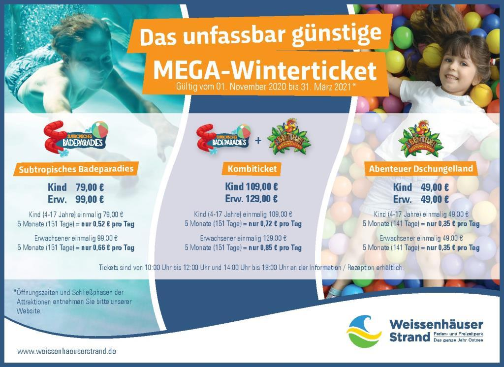 Mega Winterticket